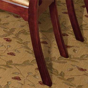 Nourison Broadloom Carpet in Chicago, IL